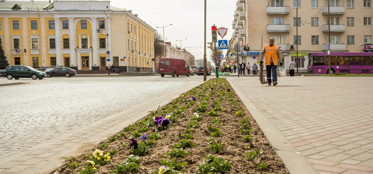 В год сажают 100 тысяч цветов, вывозят 37 тысяч тонн мусора. Цифры и факты о ЖКХ Барановичей
