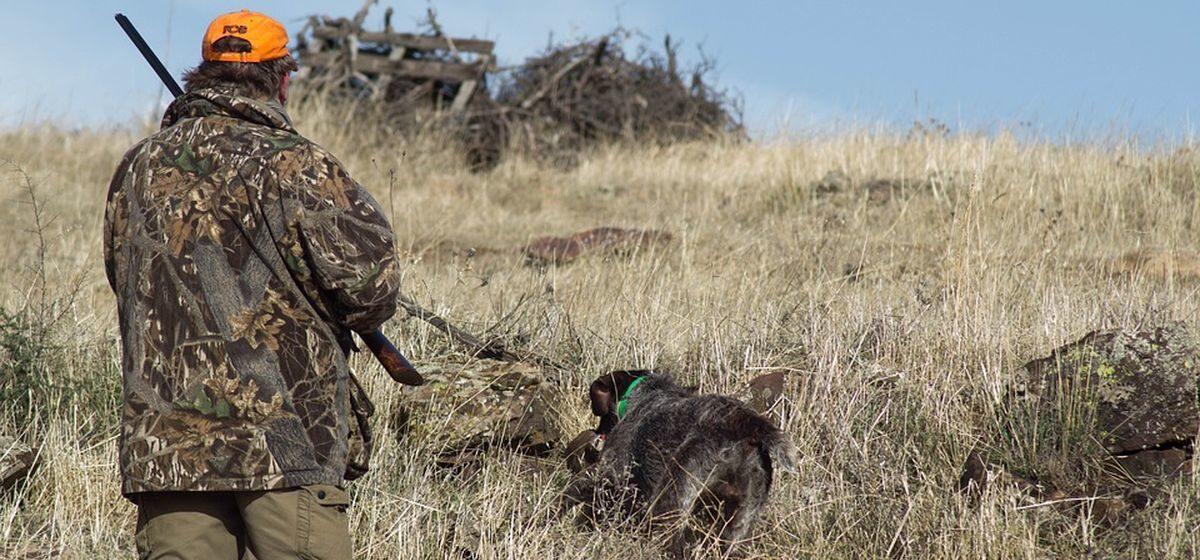 Что изменится для охотников с 20 марта. На кого можно будет охотиться, а на кого нет?