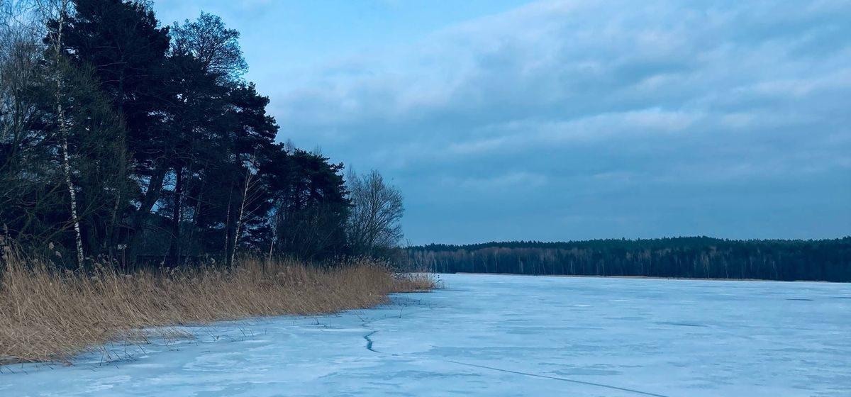 До +16: синоптики рассказали о погоде в Барановичах в ближайшие дни