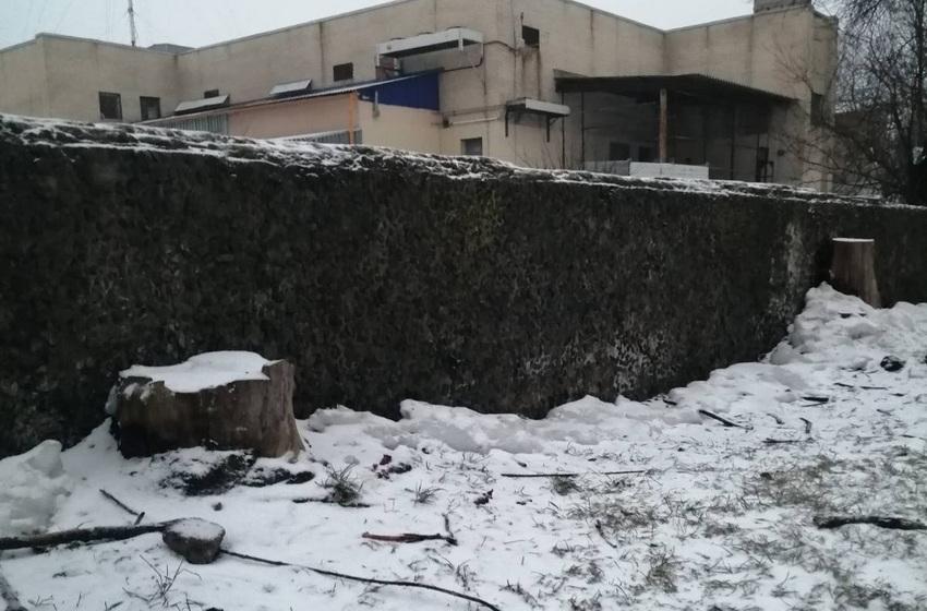 Автомобиль BMW «спрыгнул» с метрового парапета в Барановичах. Фото, видео