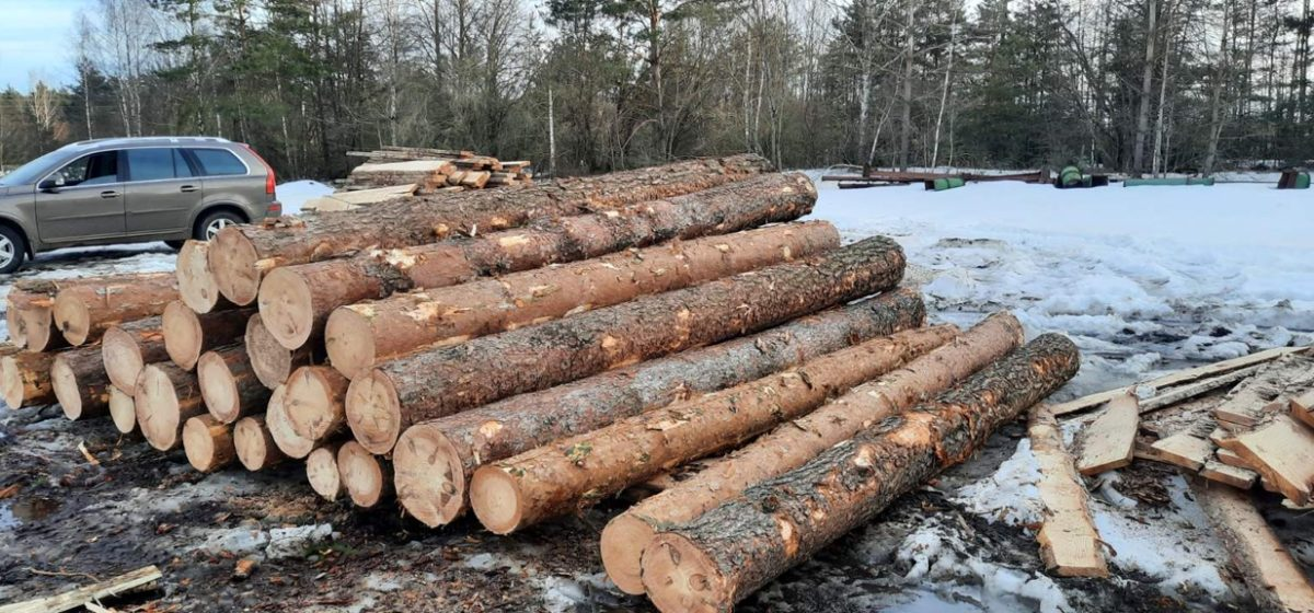 Прицеп деловой древесины по фиктивной накладной пытались украсть из Ляховичского лесхоза