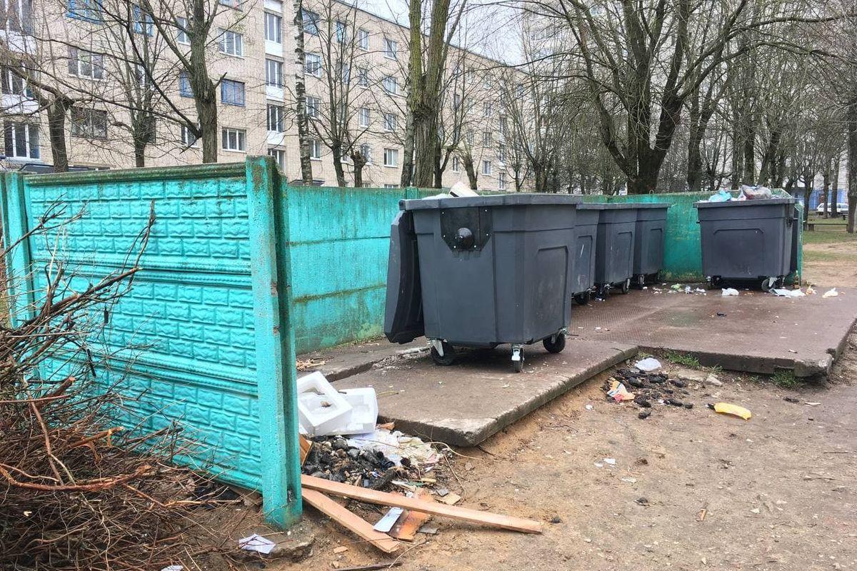 На этой площадке в контейнерах на улице Притыцкого 14 апреля было обнаружено расчлененное тело 45-летней женщины. Фото: Никита ПЕТРОВСКИЙ