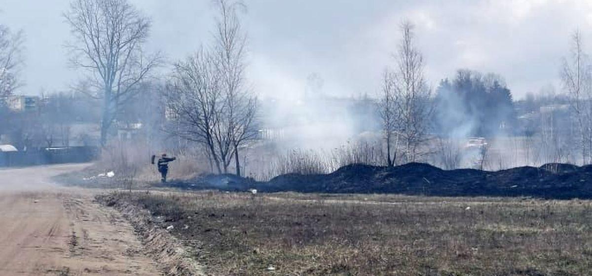 Крупный пожар произошел в районе Жлобинского озера