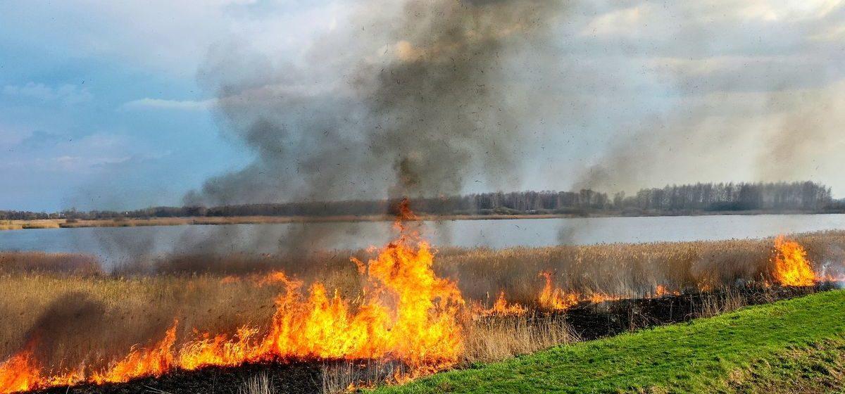 Рыбаки буквально идут сквозь огонь, спасаясь от пожара на озере в Березовском районе. Видео