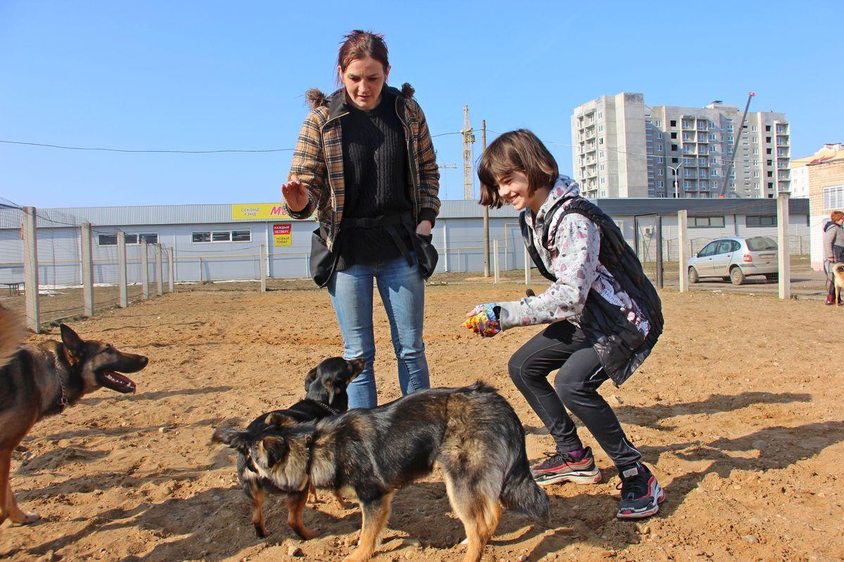 Кинолог Ирина Тутина помогает владельцам собак в дрессировке питомцев. Фото: Никита ПЕТРОВСКИЙ