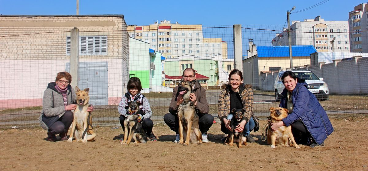 «Дворняги – они вернее». Жители Барановичей рассказали, почему взяли домой собаку из приюта