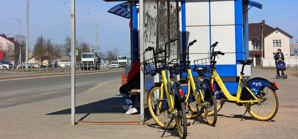 Желтые велосипеды вернулись на улицы Барановичей