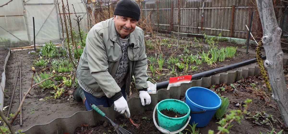 Чем подкормить и обработать клубнику весной, чтобы получить хороший урожай ягод