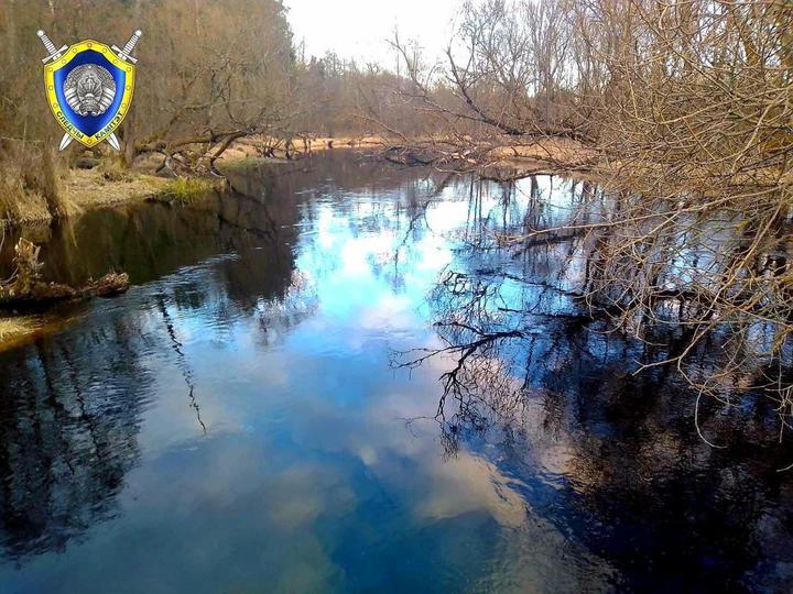 Пятилетний мальчик утонул в реке в Борисовском районе