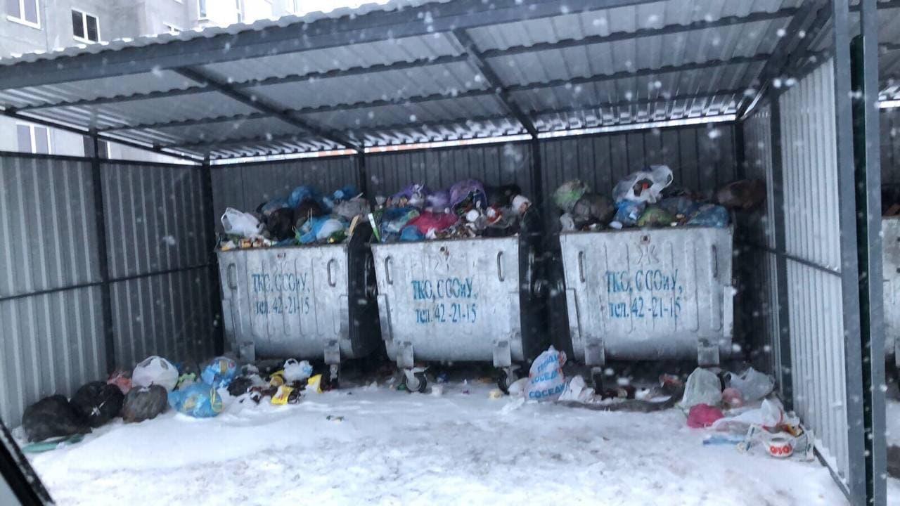 Так выглядели мусорные контейнеры в феврале. Фото: личный архив жительницы дома
