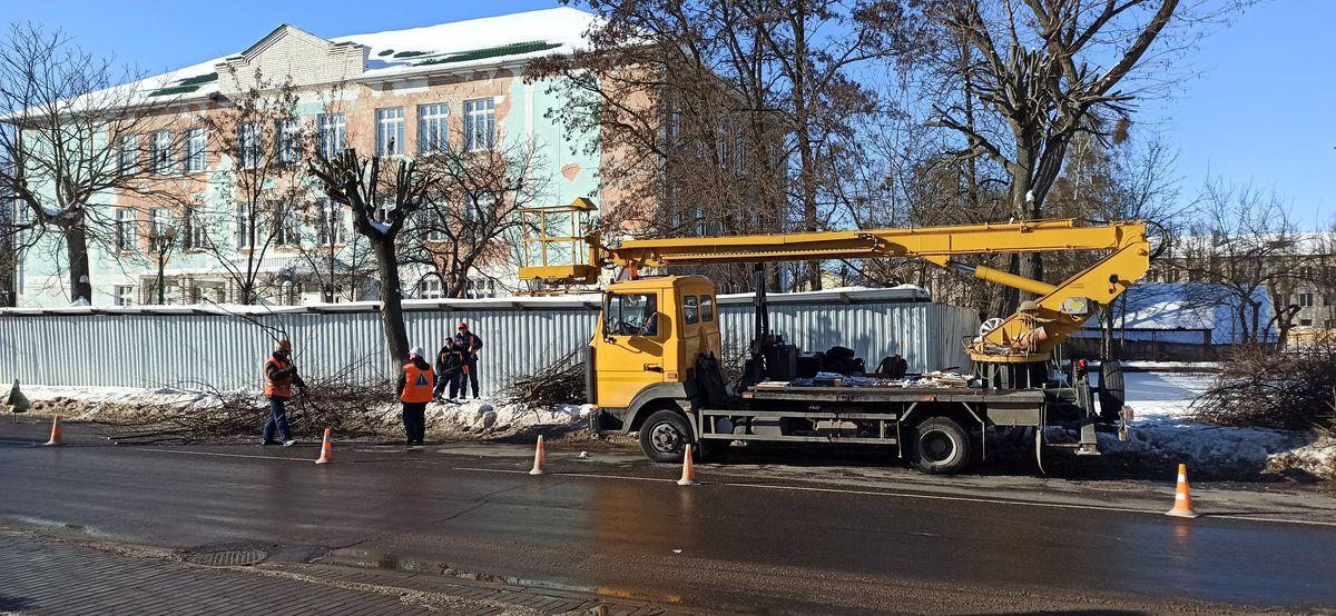 То ветки спиливают, то меняют провода. Как жители частного сектора в Барановичах страдают от частого отключения электричества