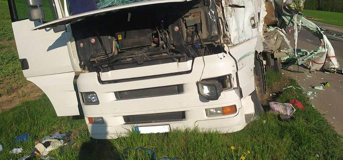 Две фуры столкнулись под Ивьем — одного из водителей зажало в кабине. Видео