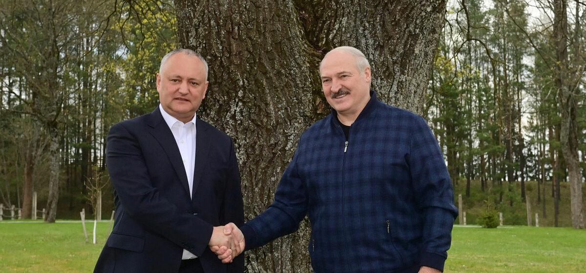 «Они хотят убрать, убить президента и думают, что народ тут аплодировать им будет?». Лукашенко встретился с экс-президентом Молдовы