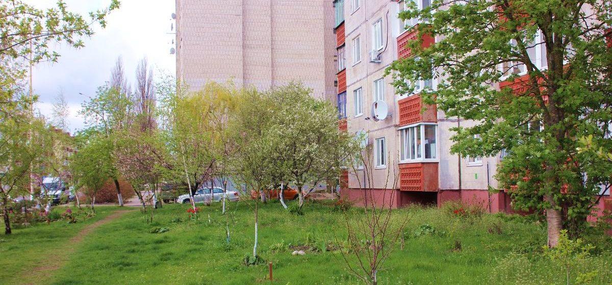 «Мы не агрономы, а просто энтузиасты». Как жители Барановичей благоустроили территорию возле своего дома и чего хотят от властей