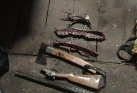 Осудили браконьера, который с помощью петель поймал двух косуль под Барановичами