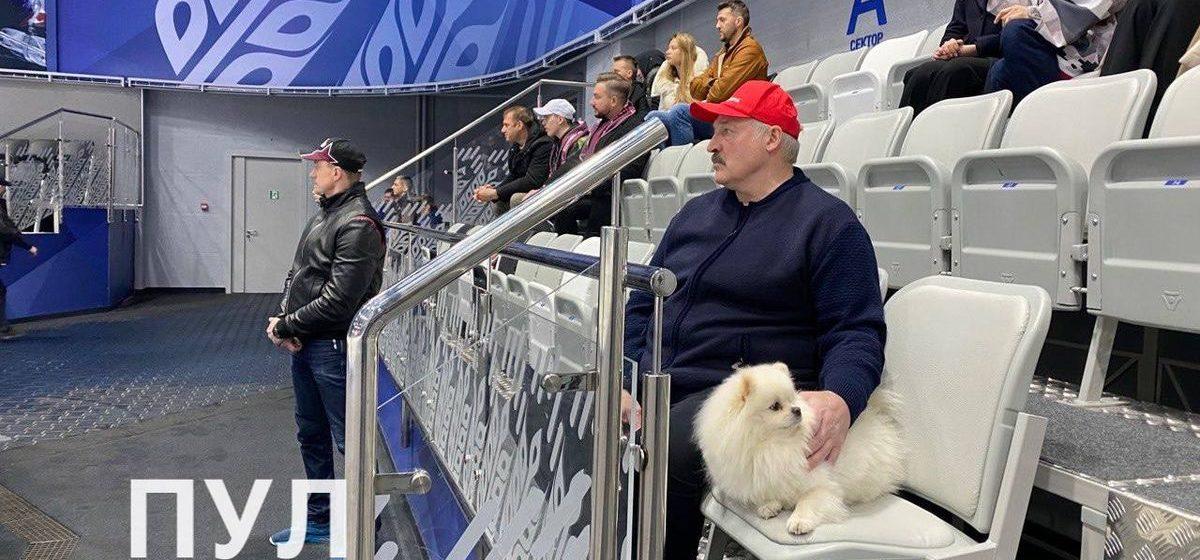 Как Лукашенко со своим шпицем смотрел хоккей. Фотофакт
