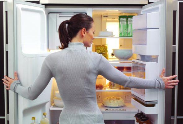Как выбрать холодильник для дома и какая марка самая долговечная