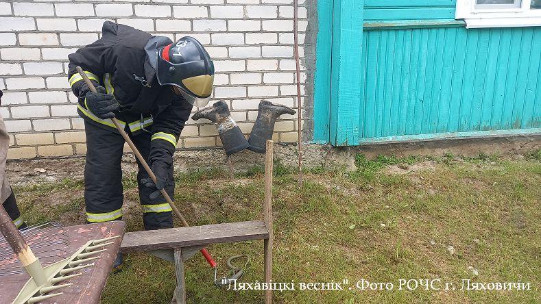 Змея заползла во двор к женщине в Ляховичском районе. Пришлось вызвать спасателей