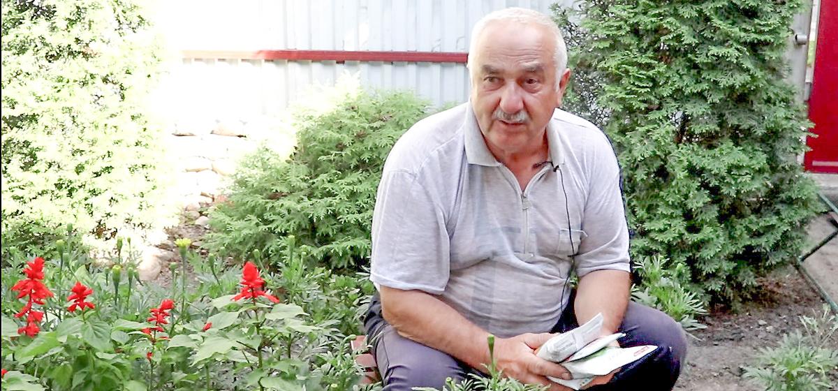 Вопрос-ответ. Нужно ли обрывать цветки у картофеля?