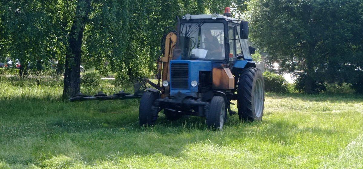 Траву у Жлобинского озера, на которую жаловались жители Барановичей, начали косить