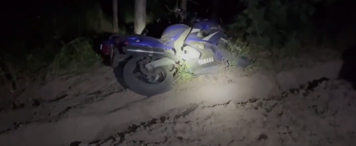 Мотоциклист погиб после столкновения с лосем. Видео