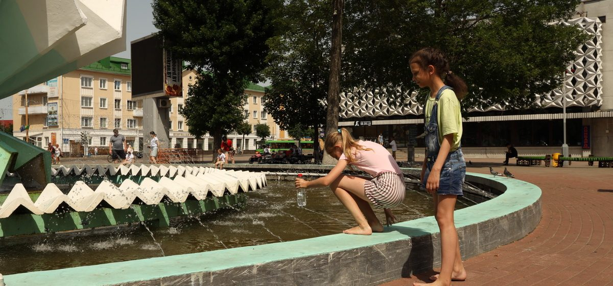 Тополиный пух, жара, июнь! Погода в Барановичах 24 июня