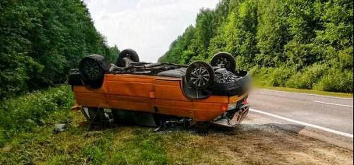Микроавтобус врезался в лося в Шумилинском районе — погибли 2 человека, еще 5 в больнице