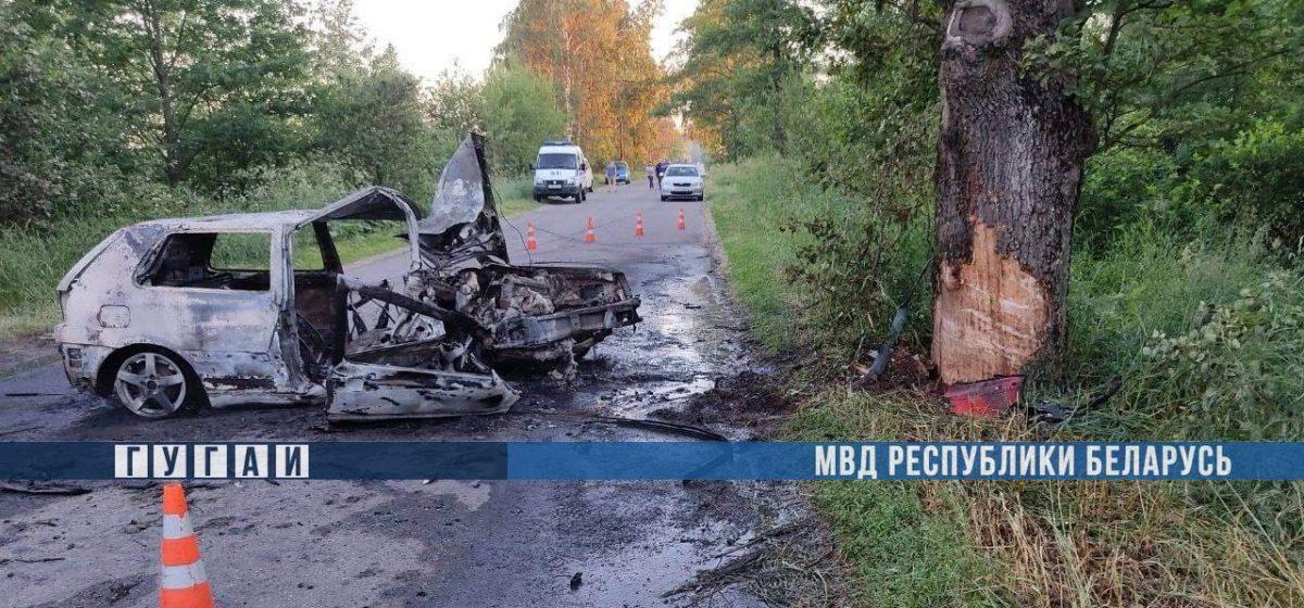 Пьяный бесправник вылетел с дороги и врезался в дерево в Калинковичском районе — погибла 20-летняя девушка