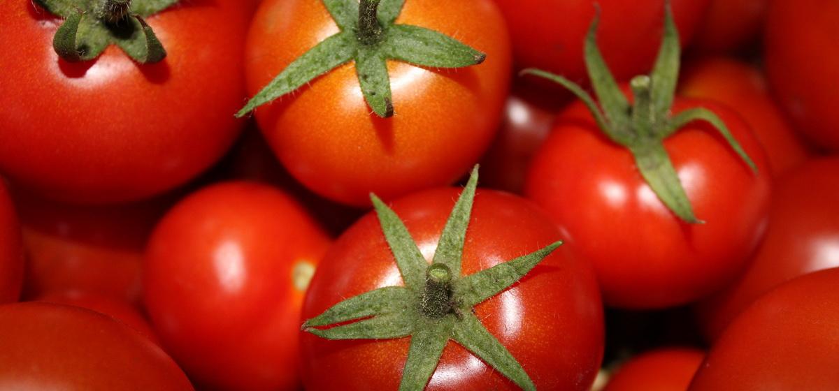 Ученые объяснили, что произойдет с организмом, если каждый день есть помидоры