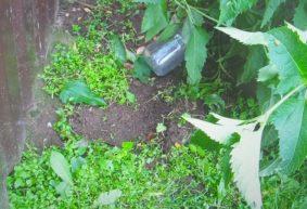 Житель Барановичей оставил деньги в банке под забором. Это заметил его друг и не упустил момент