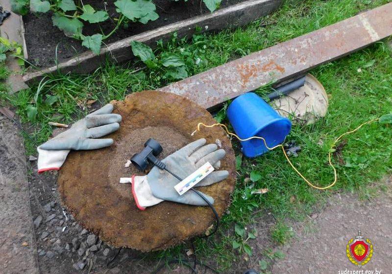 Мужчину убило током, когда он добывал червей на рыбалку в Ветковском районе
