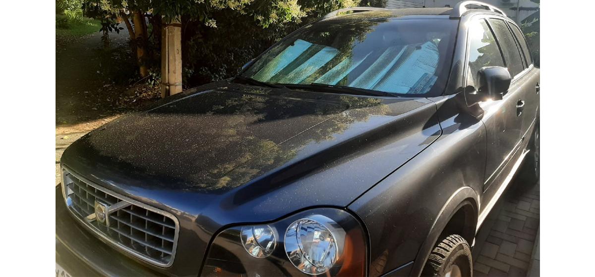 Лето, солнце и авто: как защитить машину в жару от действия высоких температур