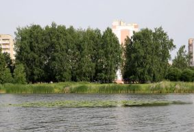 «Это настоящая свалка!». Сестры пошли гулять на озеро в Барановичах, а вернулись с пятью пакетами мусора