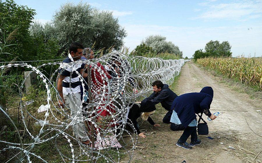 «В полученных назад термосах находили мочу и даже экскременты». Мигранты осваиваются в Литве