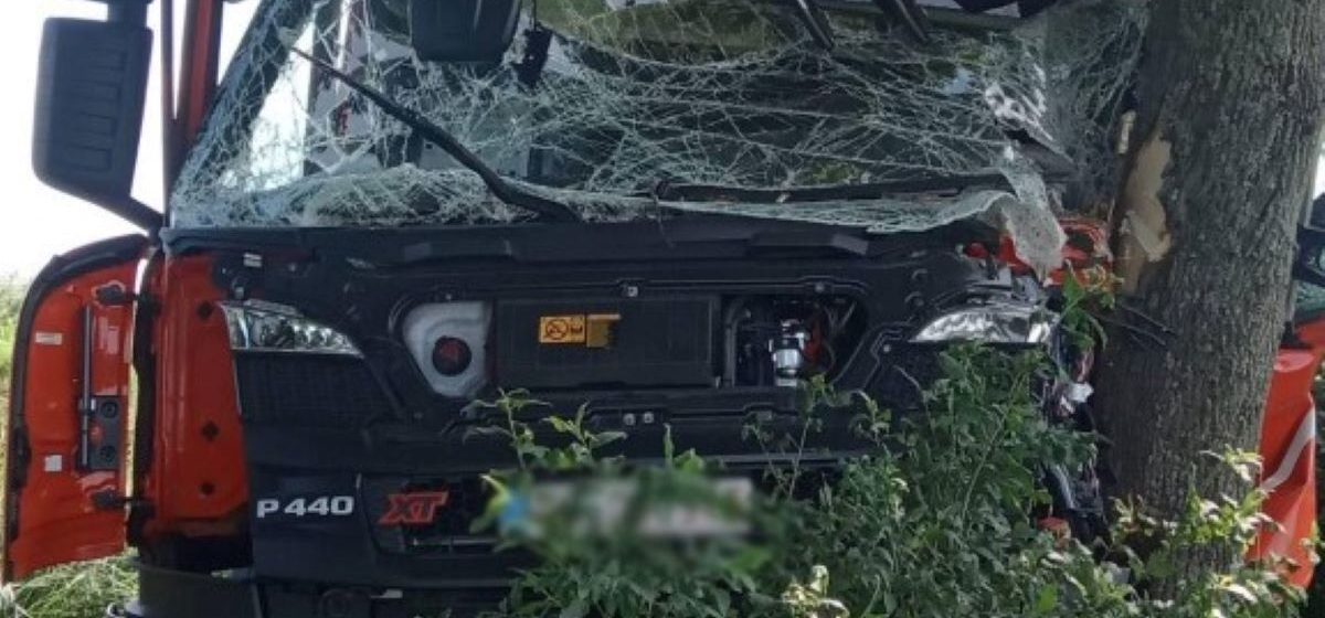 Фургон вылетел в кювет и врезался в дерево под Ивацевичами — пострадал водитель из Барановичского района