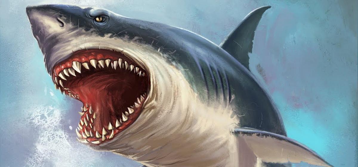 Интересные факты: Ученые определили самую большую акулу, существовавшую на Земле