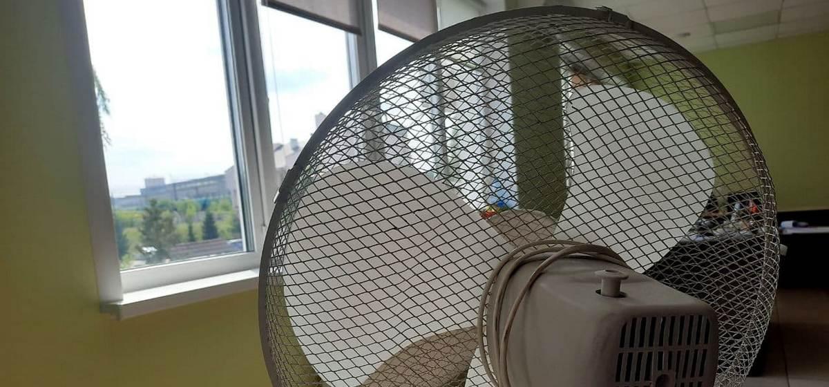 Готовьте вентиляторы. 15 июля обещают до 36 градусов жары