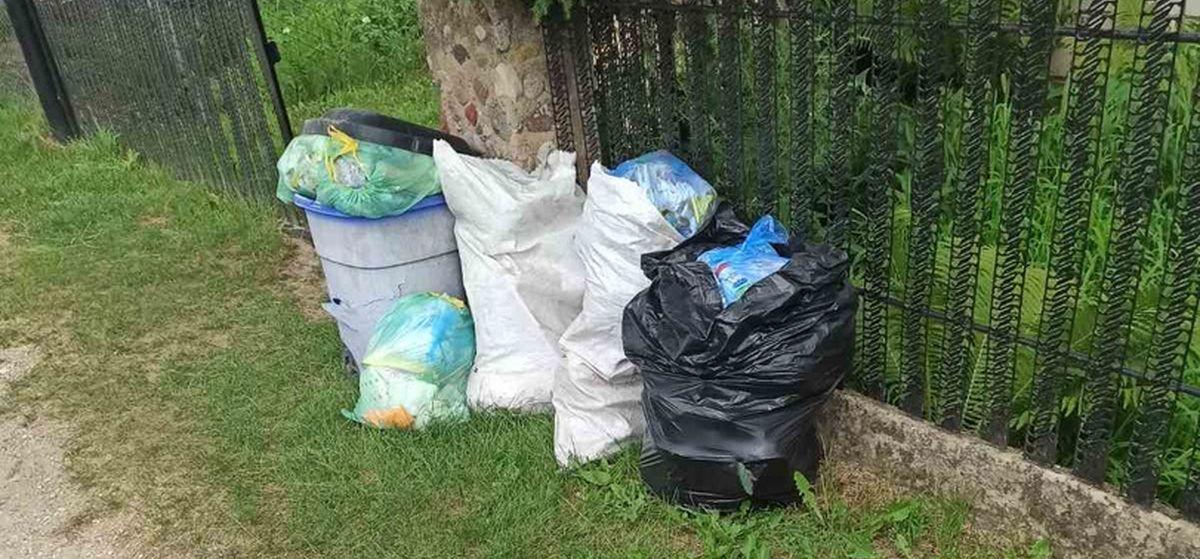 «Сами решить проблему не можем». Что не так с вывозом мусора в деревне под Барановичами