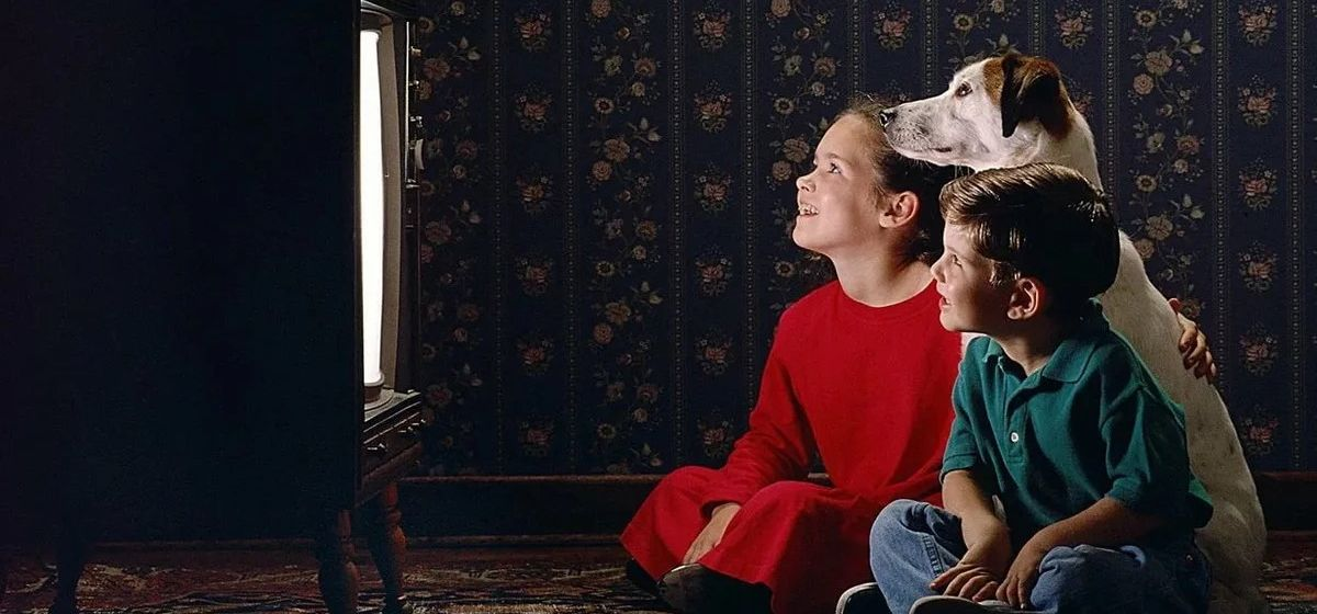 Тест. Электроник или Васечкин. Помните ли популярные советские фильмы для детей?
