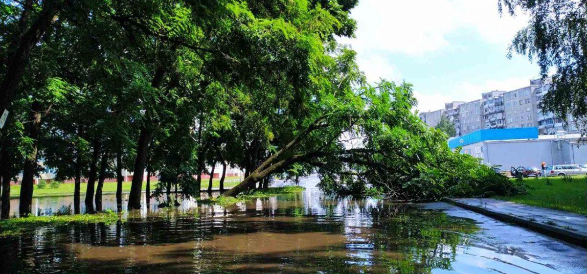 Потоп и сломанные деревья. Что натворила гроза в Барановичах. Фотофакт