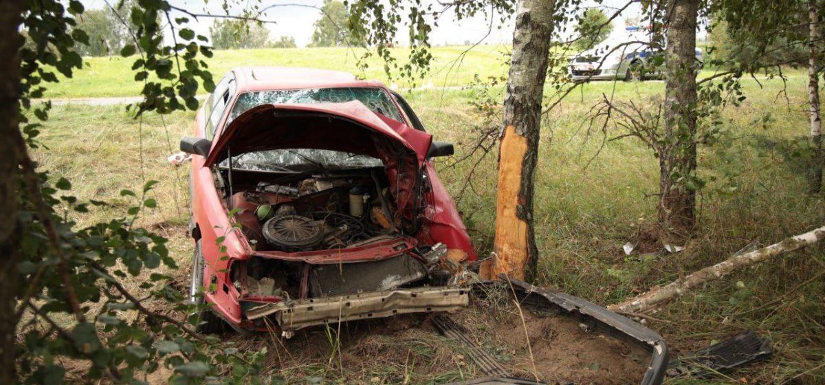 Автомобиль Audi вылетел в кювет и врезался в дерево под Барановичами — есть пострадавшие