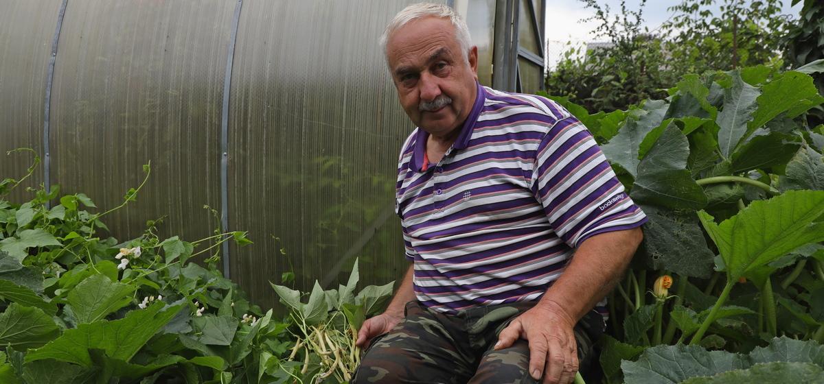 Как вырастить вьющуюся фасоль без опор и не потерять в урожае – проверенный способ от опытного огородника