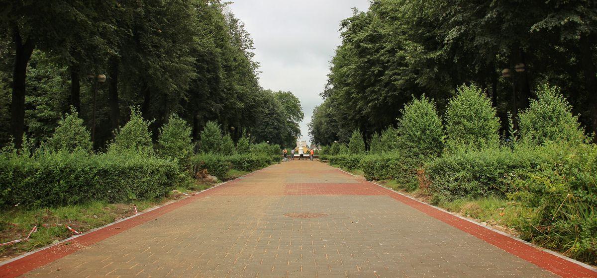 Новую плитку уложили в молодом парке в Барановичах. Фотофакт