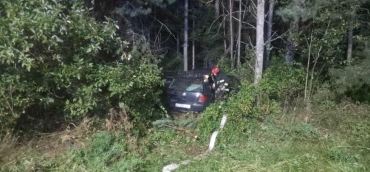 Милиция разыскивает очевидцев ДТП с лошадью под Барановичами, в котором погиб водитель