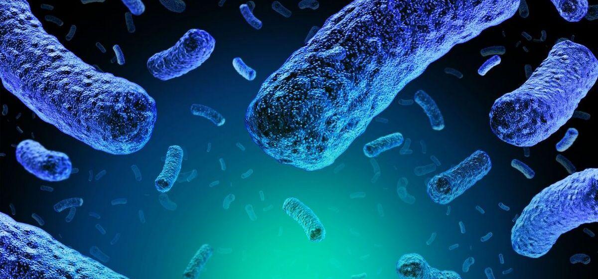 Случай редкой инфекции зафиксирован в Барановичах