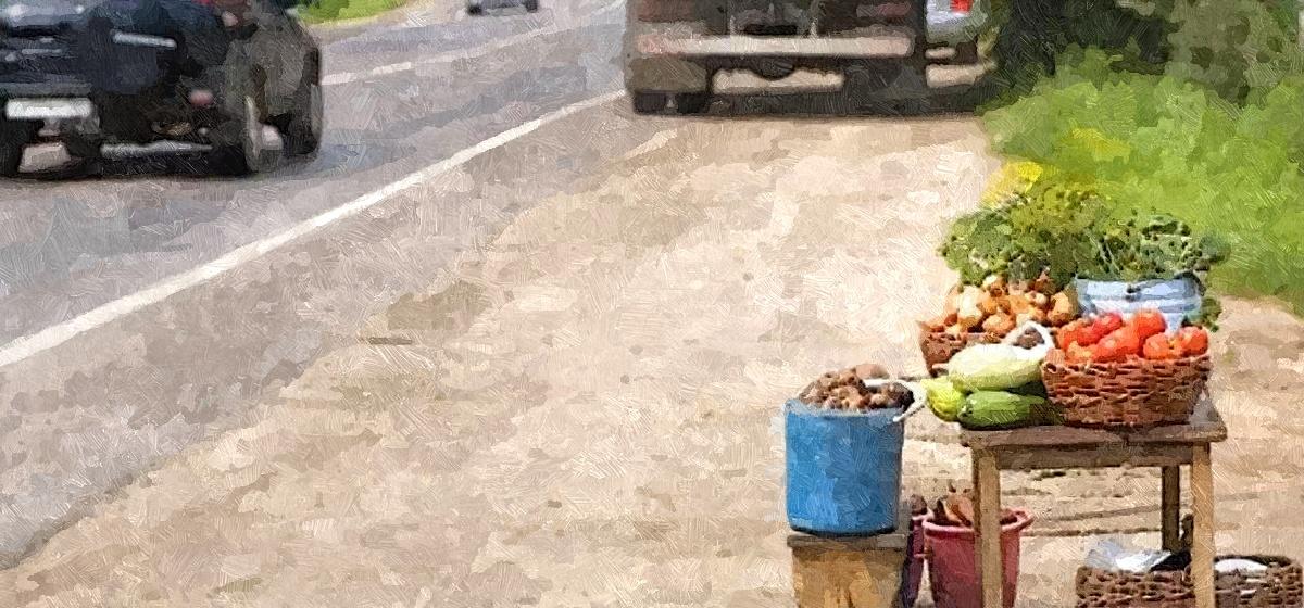 Бабушки на трассе, или Чем опасна придорожная торговля
