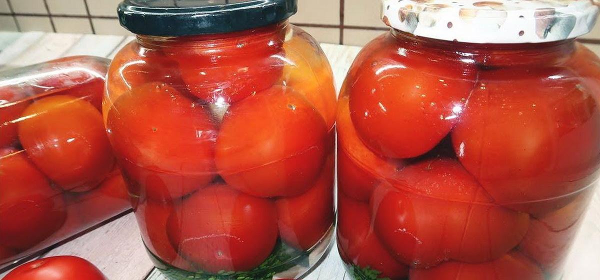 Вкусно и просто. Засолка помидоров холодным способом