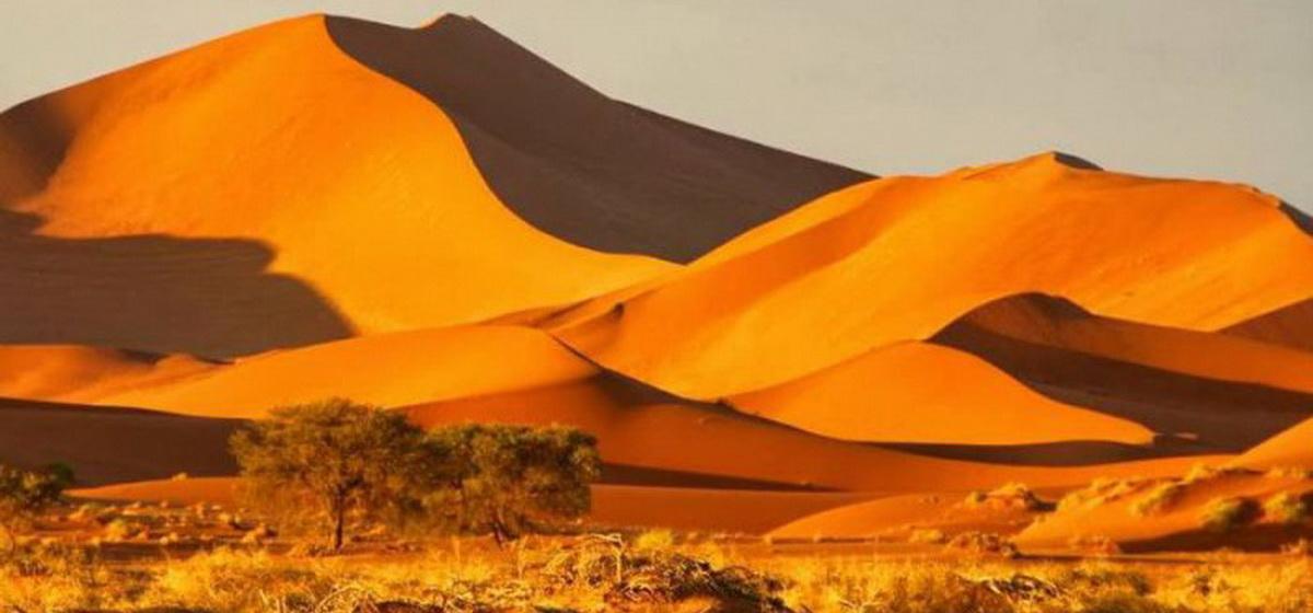 Интересные факты. Самая древняя пустыня на планете и чем она уникальна
