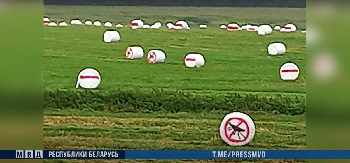 Милиция задержала 7 человек, которые разрисовали в бело-красно-белые цвета 80 тюков с сенажом