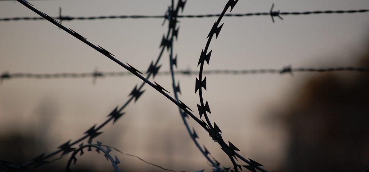 «БелТА» сообщило о трупе женщины на белорусско-польской границе. Видео